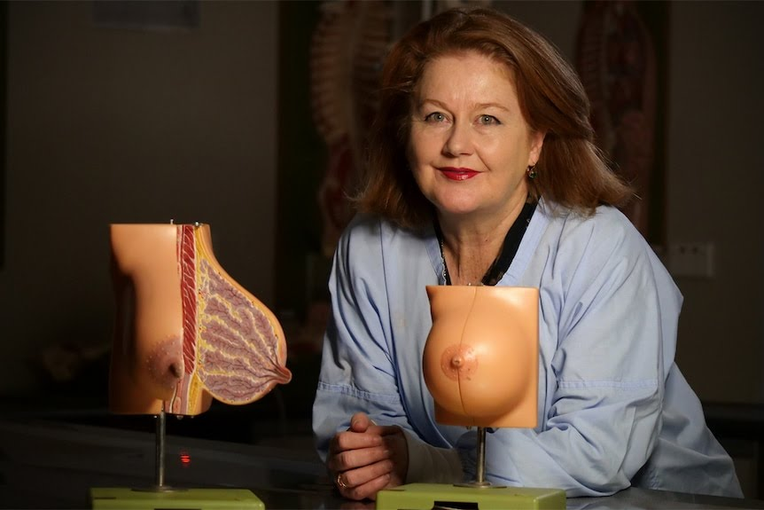 Associate Professor Deirdre McGhee leans on a lab table with an open breast model.